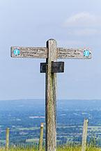 South Downs Way near Devils Dyke