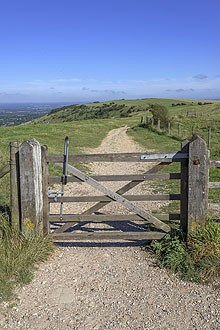 Gate on the South Downs Way