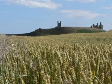 Dunstanburgh Castle on St Oswolds Way