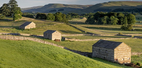 Barns in Swaledale